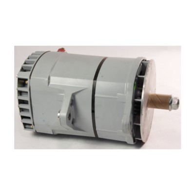 Delco Remy Alternator - Remanufactured TWD 10459065 | Buy Online