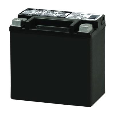 Aaa Battery Promo Code >> NAPA AGM Automotive Auxiliary Battery BCI No. 400 200 A BAT AUX14 | Buy Online - NAPA Auto Parts