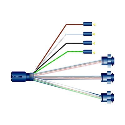 Terrific Trailer Wiring Harnesses H D Truck Phillips Phi 369020456 Buy Wiring Database Rimengelartorg